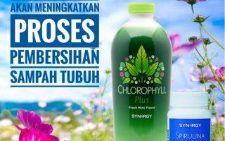 Produk Pelangsing Herbal di Medan